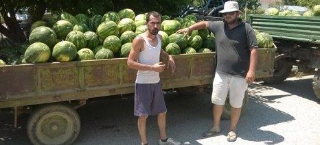Αγρότης πρόσφερε καρπούζια και πεπόνια στο Κοινωνικό Παντοπωλείο Τρικάλων