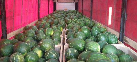 Incofruit: Να συνάψει η Ελλάδα διμερή πρωτόκολλα για εξαγωγές φρούτων