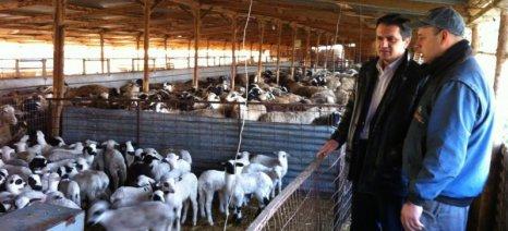 Την πρόσληψη προσωπικού για τα κτηνιατρεία των δήμων Σερβίων-Βελβεντού και Βοΐου ζητά ο Κασαπίδης
