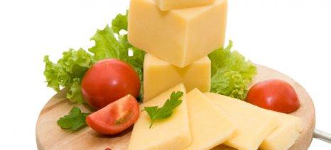 Απαγορεύτηκε η εξαγωγή γαλακτοκομικών με αγελαδινό γάλα από την Ελλάδα στην Αυστραλία