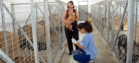 Εγκρίθηκε η διάθεση 600.000 ευρώ στην Τοπική Αυτοδιοίκηση για τα καταφύγια αδέσποτων ζώων