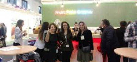 Με 85 συμμετοχές από Ελλάδα και 16 από Κύπρο η Διεθνής Έκθεση Fruit Logistica 2019