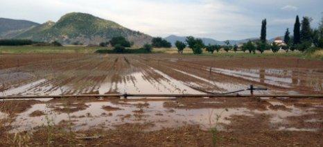 Επίκαιρη ερώτηση για τις καταστροφές στην αγροτική παραγωγή από τις βροχοπτώσεις στο Ν. Τρικάλων