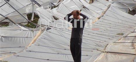 Σε 2 λεπτά καταστράφηκαν 30 στρέμματα από τον ανεμοστρόβιλο στη Σητεία