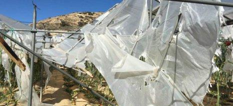Οι ζημιές στα θερμοκήπια της ανατολικής Κρήτης προκάλεσαν αντιπαράθεση στη Βουλή