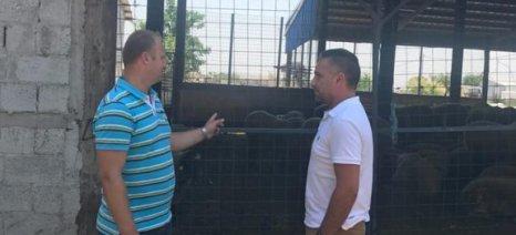 Τη φάρμα του Ζήση Παρλίτση επισκέφθηκε ο βουλευτής της Ένωσης Κεντρώων, Γιώργος Κατσιαντώνης