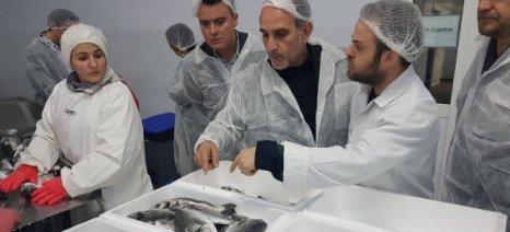 Οι ιχθυοκαλλιέργειες της Αιτωλοακαρνανίας πυλώνας στήριξης της απασχόλησης και της οικονομίας στη Δυτική Ελλάδα