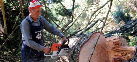 Παράταση προθεσμίας προσαρμογής Δασικών Συνεταιριστικών Οργανώσεων έως τον επόμενο Μάρτιο