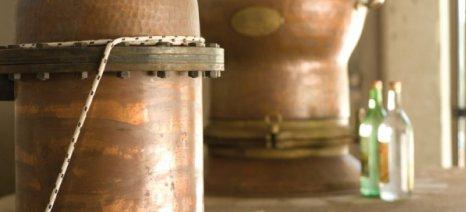 Ξεκίνησε στη Ρόδο η έκδοση αδειών για απόσταξη σούμας σε καζάνια έως 130 λίτρα