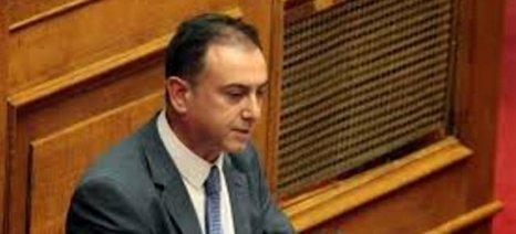 Κέλλας: Να δώσει απάντηση ο υπουργός για τον ΦΠΑ στα ελληνικά κρέατα