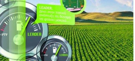 Τρίπολη: Το νέο τοπικό πρόγραμμα LEADER σε διαβούλευση στις 22 Μαρτίου