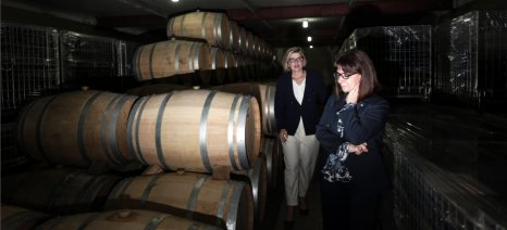 """Τα Θρακικά Εκκοκκιστήρια και το οινοποιείο """"Κίκονες"""" επισκέφθηκε η Πρόεδρος της Δημοκρατίας"""