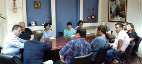 Κινέζοι εμπειρογνώμονες σε οπωρώνες και συσκευαστήρια πυρηνοκάρπων στην Ημαθία