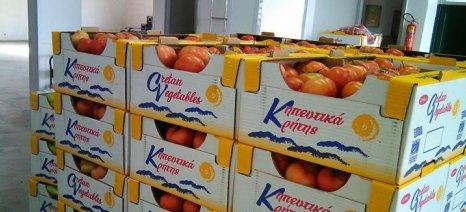 Αυστηρότερους ελέγχους στα εισαγόμενα φορτία κηπευτικών ζητούν οι αγροτικοί σύλλογοι της Κρήτης