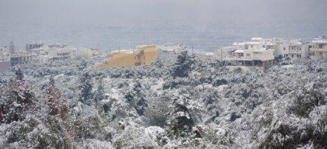 Δηλώσεις ζημιών από σήμερα για χιονόπτωση στον Δήμο Κισσάμου