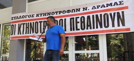 Απογοητευμένοι οι κτηνοτρόφοι της Ανατολικής Μακεδονίας-Θράκης στέλνουν επιστολή στον πρωθυπουργό