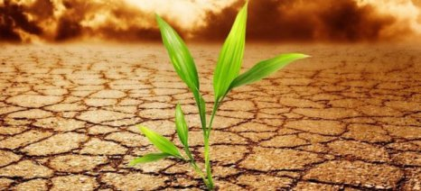 Η κλιματική αλλαγή απειλεί την παραγωγικότητα της γεωργίας και το αγροτικό εισόδημα