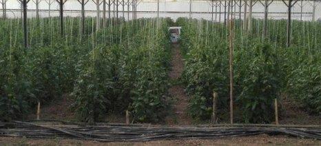 Έκλεψαν αγροτικά μηχανήματα και προϊόντα από θερμοκήπια στο Παναιτώλιο