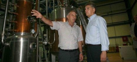 """Γ. Κόκκαλης: """"Ταφόπλακα"""" για την παραγωγή κρασιού ο ειδικός φόρος"""