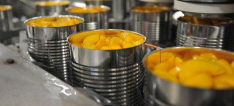Κονσερβοποιοί: Ελαφρά αυξημένη αναμένεται φέτος η παραγωγή συμπύρηνου ροδάκινου