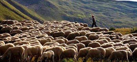 Πλήθος αιτημάτων από την Ομοσπονδία κτηνοτροφικών συλλόγων Θεσσαλίας
