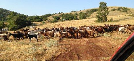 Έως 23 Ιανουαρίου οι ενστάσεις για την εξισωτική στην Καστοριά