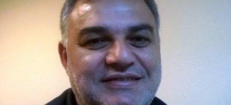 Πρόεδρος στην Ένωση Φυλής Χολστάιν ο Ηλίας Κοτόπουλος