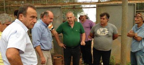 Επιτόπια εκτίμηση των ζημιών από την κακοκαιρία στους Γαργαλιάνους έκανε ο πρόεδρος του ΕΛΓΑ