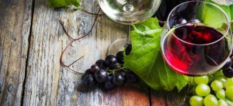 Σε κατάρρευση οδηγεί τον αμπελοοινικό κλάδο ο ΕΦΚ στο κρασί