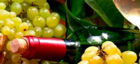 Στα 16 εκατ. ευρώ το ποσό που θα διατεθεί για την προώθηση του ελληνικού οίνου στο εξωτερικό