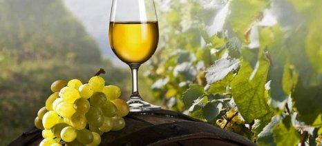 Οι Ευρωπαίοι, πρώτοι στην κατανάλωση κρασιού