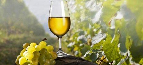 Μειωμένα κατά 9,88% ήταν τα αποθέματα οίνου στο ξεκίνημα της τρέχουσας εμπορικής περιόδου