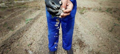 Ανησυχητική η ξηρασία στην Ισπανία