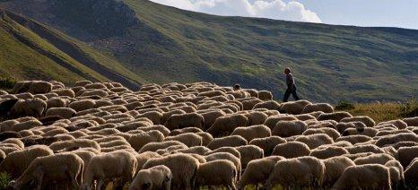 Ενημέρωση του Συλλόγου Κτηνοτρόφων Αργιθέας για το πρόγραμμα βιολογικής κτηνοτροφίας