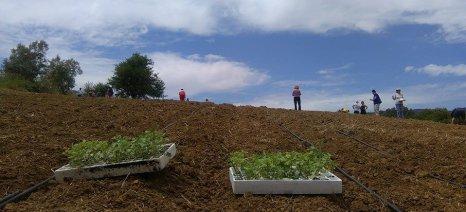 Εφικτή μια αγροτική πολιτική που θα σέβεται το κλίμα;