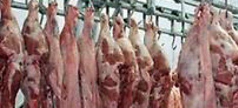 """Η ΠΟΓΕΔΥ κατηγορεί την κυβέρνηση ότι """"σιγοντάρει"""" παράτυπους κτηνιατρικούς ελέγχους στους ΣΥΚΕ"""