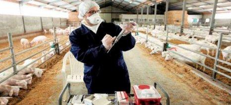 Σύντομα νέοι κανόνες για κτηνιατρικά φάρμακα και φαρμακούχες ζωοτροφές