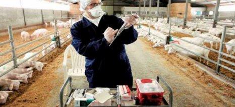 Με 733 χιλ. € αποζημιώνεται η επιβολή μέτρων εξυγίανσης ζωϊκού κεφαλαίου