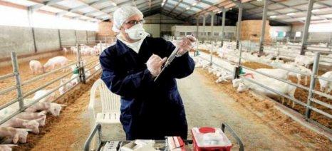 «Καμπανάκι» για διασυνοριακές ασθένειες των ζώων από τους Υπουργούς Γεωργίας
