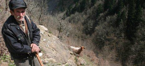 Την κατάργηση των τελών βοσκής ζήτησαν από τον δήμαρχο Θάσου οι κτηνοτρόφοι