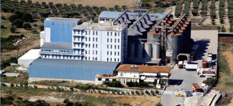 Μπόλαρης στους Κυλινδρόμυλους Χαλκιδικής: «Προϋπόθεση η ποιότητα στο σιτάρι για εξαγωγές - καλύτερες τιμές»