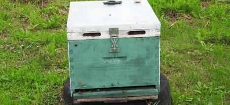 Και οι μελισσοκόμοι έχουν πληγεί από τα περιοριστικά μέτρα κατά της πανδημίας - ζητούν μέτρα ενίσχυσης