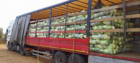 Αλλαγές στα πιστοποιητικά φορτηγών νωπών τροφίμων σε συμμόρφωση με τον ΟΗΕ