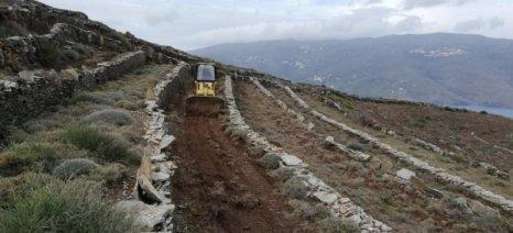 LIFE TERRACESCAPE: Καλλιέργεια χωραφιών σε αναβαθμίδες