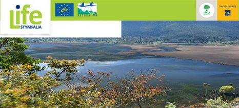Επιλεκτική κοπή καλαμιών στη λίμνη Στυμφαλία για να «αναπνεύσει» ο υδροβιότοπος