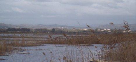 Αναστάτωση για τη διανομή των καλλιεργούμενων εκτάσεων των πρώην λιμνών στον Πύργο