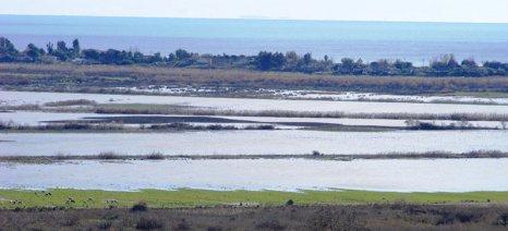 Γιατί πρέπει να αναγεννηθεί η πρώην λίμνη Μουριά στο δήμο Πύργου Ηλείας