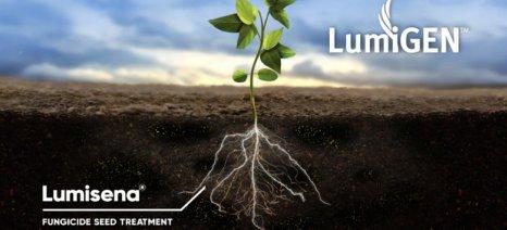 Χορήγηση κατά παρέκκλιση άδειας στο μυκητοκτόνο Lumisena για επένδυση σπόρων ηλίανθου