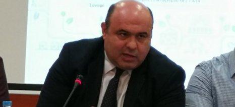 Μάμαλης στην Τρίπολη: «Δεν πρέπει να κάνουμε τα λάθη του παρελθόντος με τα Σχέδια Βελτίωσης»
