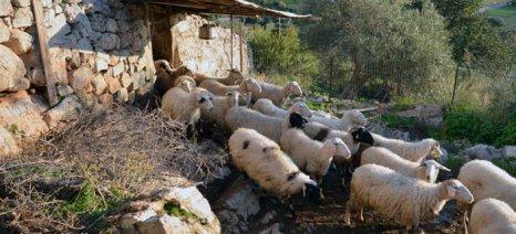 Ψηφίστηκε ο νόμος του ΥΠΕΚΑ που προβλέπει την «τακτοποίηση» των καταπατημένων εκτάσεων